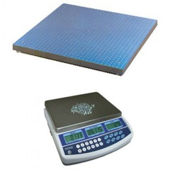 CSG QHD COUNTING SCALE HIRE | weighingscales.com