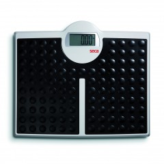 SECA MODEL 813 | weighingscales.com