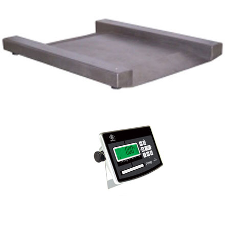 EXCELL PW-LP STAINLESS STEEL DRIVE-THROUGH PLATFORM SCALE