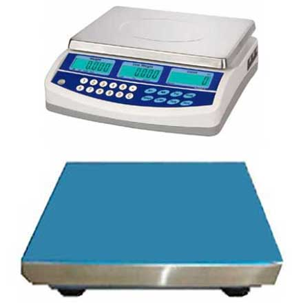 CSG QHD DUAL SCALE REMOTE BASE COUNTING SYSTEM SEPARATE LOW AND HIGH CAPACITY WEIGHING CAPABILITY