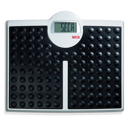 SECA MODEL 813 HIGH CAPACITY PERSONAL SCALE