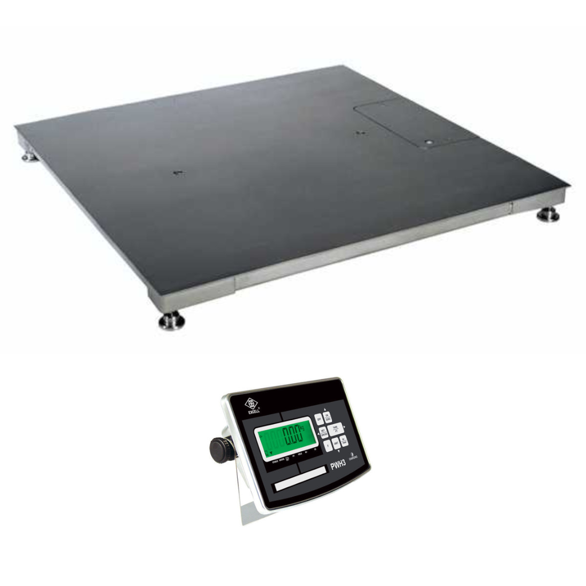 PW-TFS | weighingscales.com